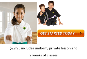karate classes ancaster